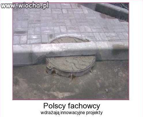 Polscy fachowcy za granicą.