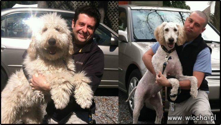 Przed i po fryzjerze