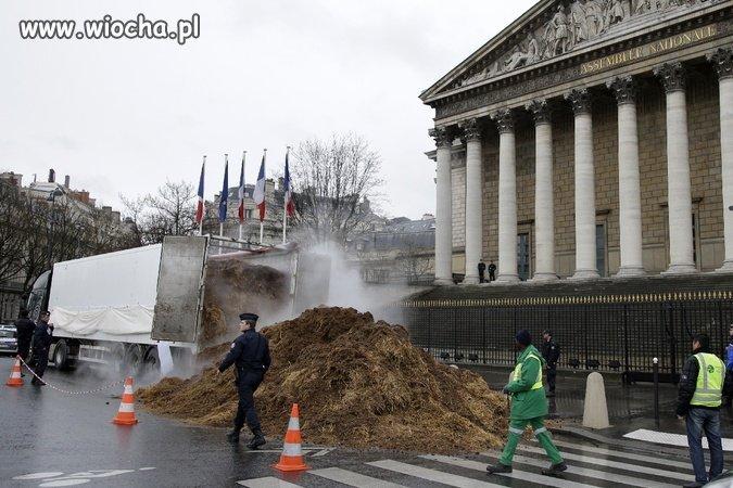 Tony łajna przed parlamentem Francji