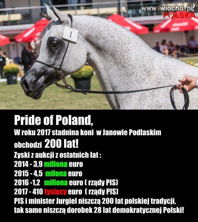 Zyski z Janowa Podl.???