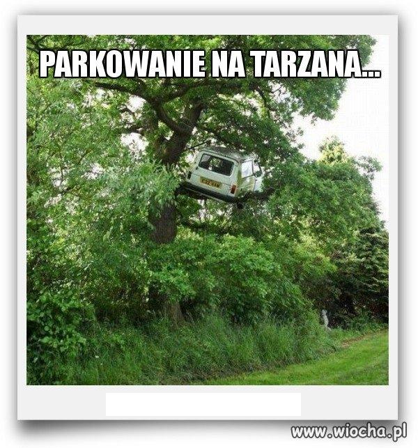 Parkowanie na Tarzana.