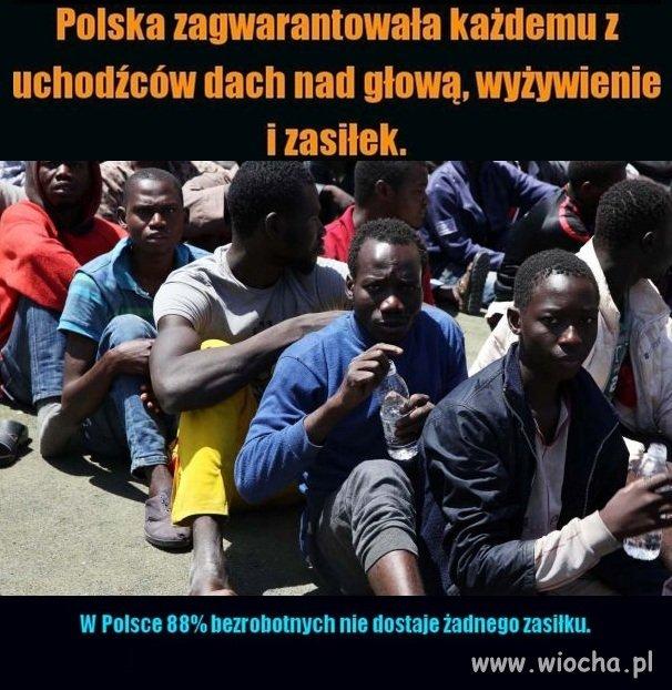 Stop dyskryminacji Polak�w