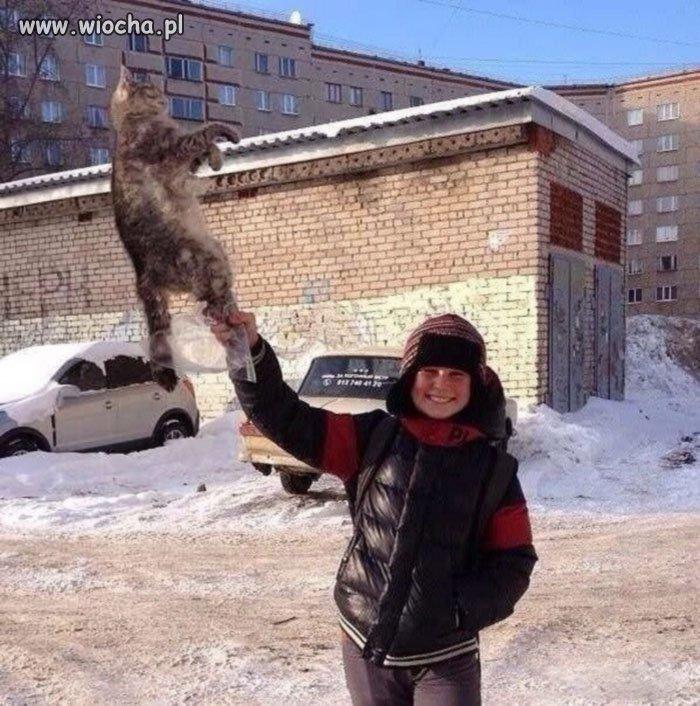 Takie tam z kotkiem