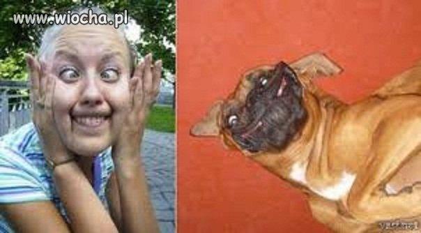 Podobieństwo jest ..