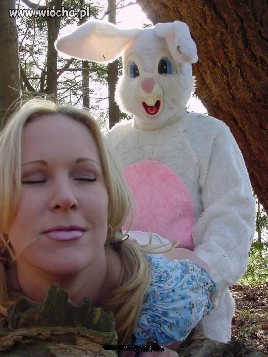 Takie tam z króliczkiem