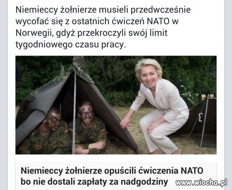 To jest armia Niemiecka ?