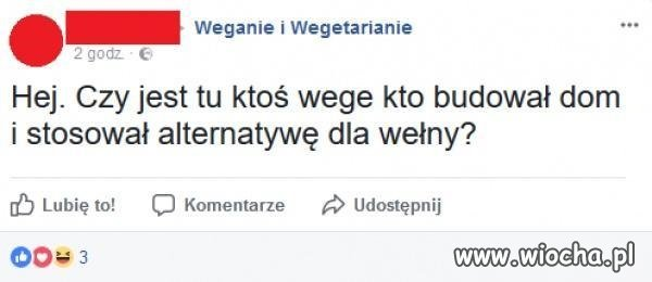 Wege to stan umysłu