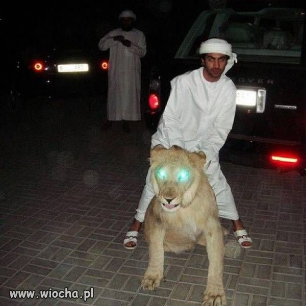 Ahmed po ciemku