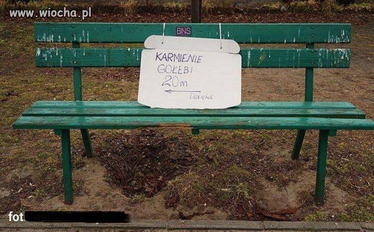 Parkowa ławka