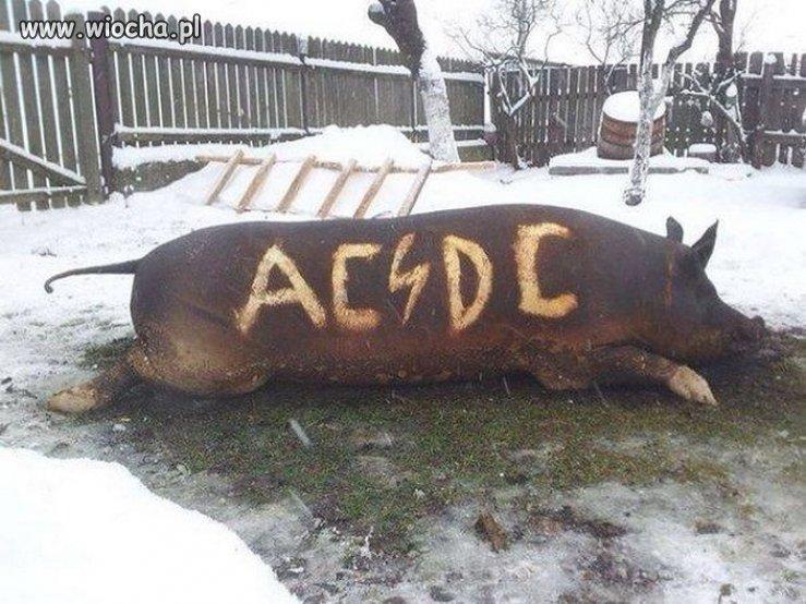 Fanka zespołu AC/DC