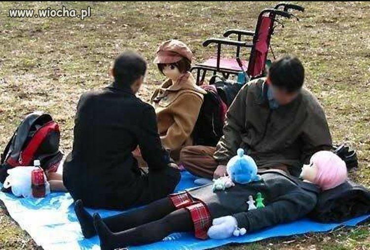 Piknik ze swoimi laskami