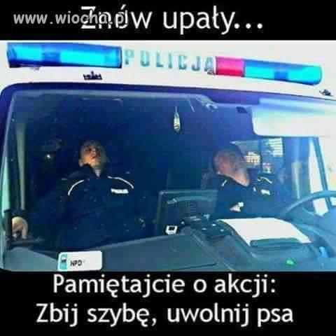 http://img.wiocha.pl/images/1/c/1c887302853b864ead74df86a0f72a15.jpg