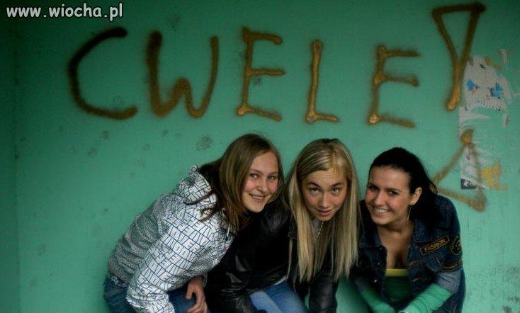 Get Cwel