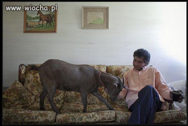 Mohammed rodzinnie na zdjęciu
