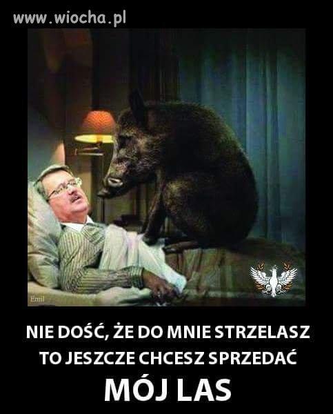Koszmary Bredzisława