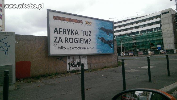 Przy takiej inwazji uchodźców ta reklama nabiera...