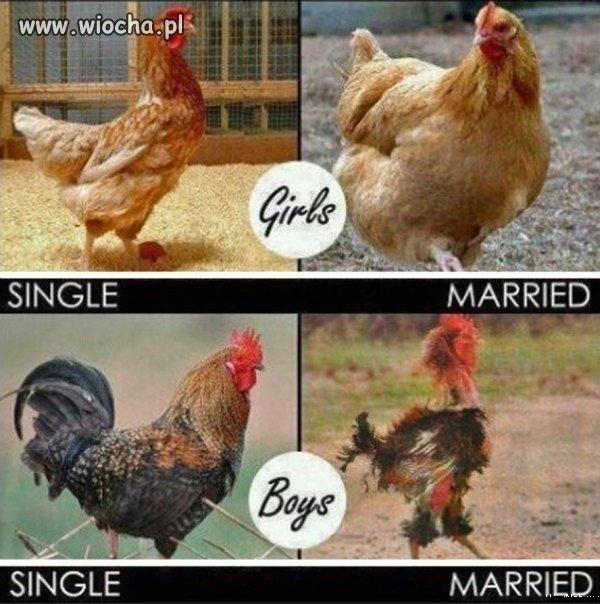 Prawda o małżeństwie jest jak kij...