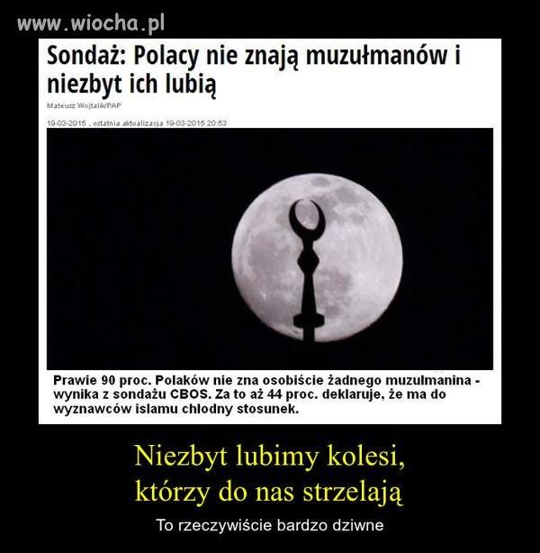 Polacy nie s� g�upi i dlatego nie chc� tych k�amc�w w kraju.