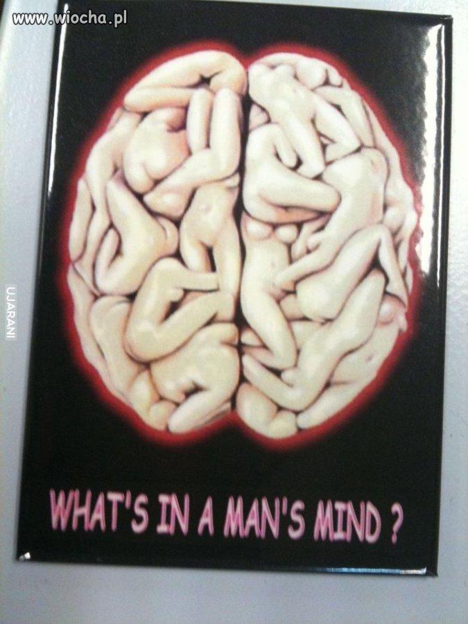 Co mają w głowie mężczyźni