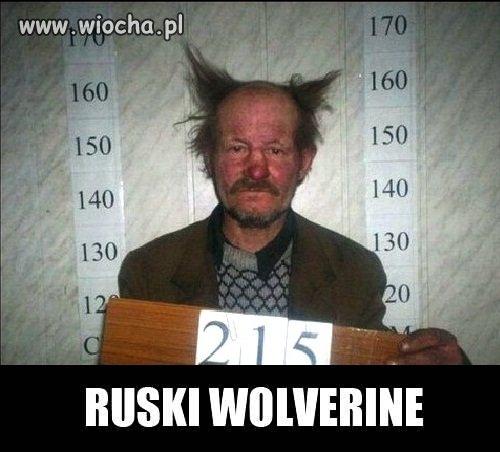 Ruski Wolverine