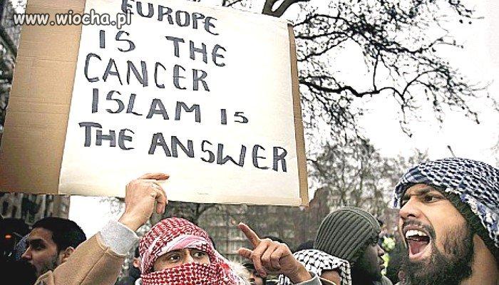 Europa jest rakiem