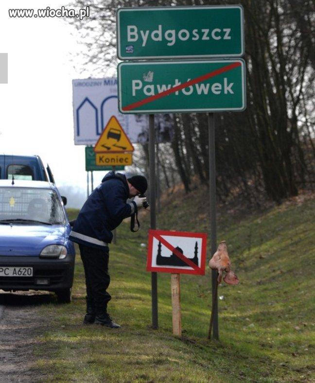 Przygotawania Polski do przyjecia migrantów.