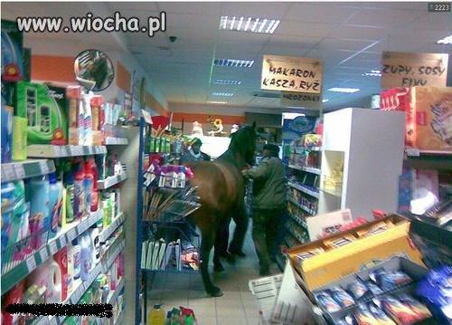 Dobry Koń Idzie z Panem Na Zakupy