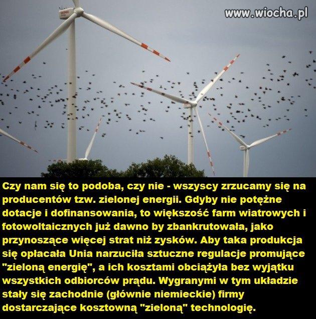 """Za przymus produkcji """"zielonej energii"""""""
