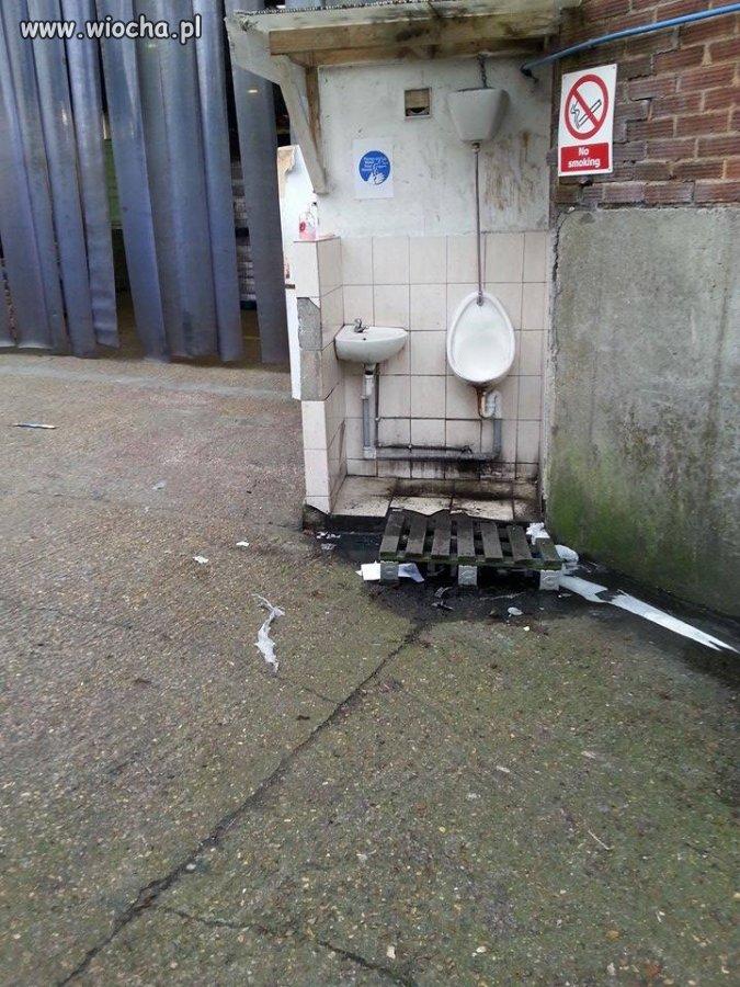 Toaleta w jednej z firm w Anglii