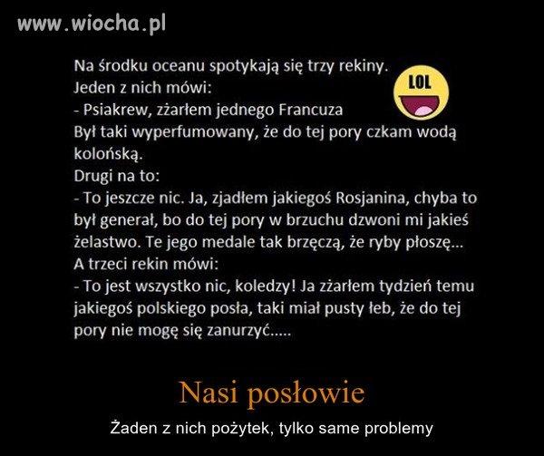 NIBY DOWCIP