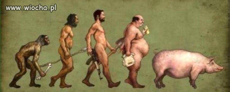 Ewolucja poselska