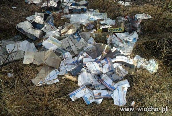 Ulotki wyborcze i plakaty Platformy wyrzucone w lesie