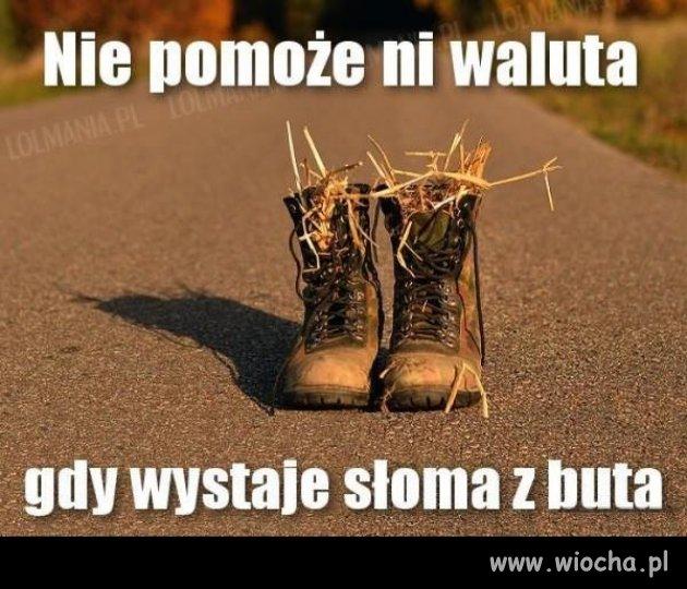 Słoma z butów