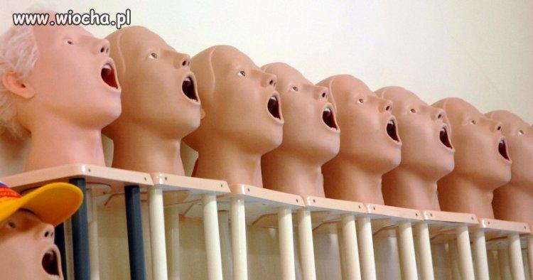 Fabryka zdziwionych