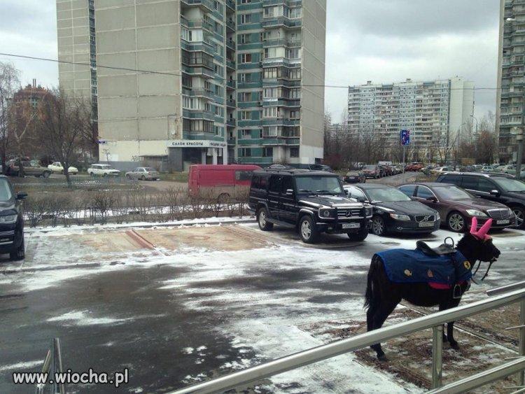 No gdzieś trzeba zaparkować.