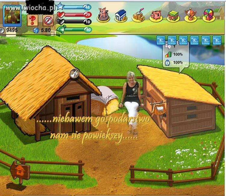 Wirtualny farmer