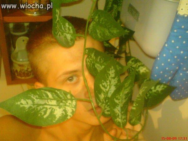 Zdjęcie z rośliną doniczkową