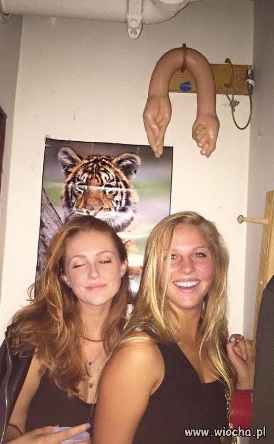Z Tygrysem w tle