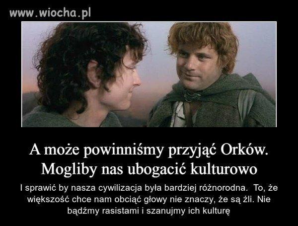 Takie tam przemyślenia Frodo i Sama.