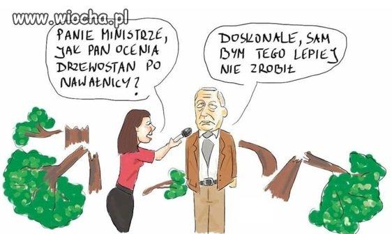 Polska w trocinach