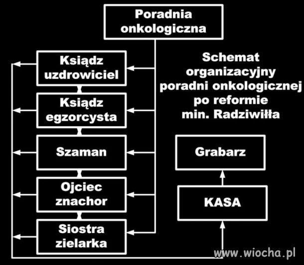 Przykładowy schemat organizacyjny opieki zdrowotnej