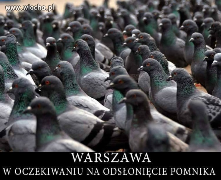 Czekają na pomnik konusa