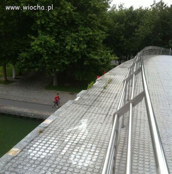 Ścieżka rowerowa dla odważnych.