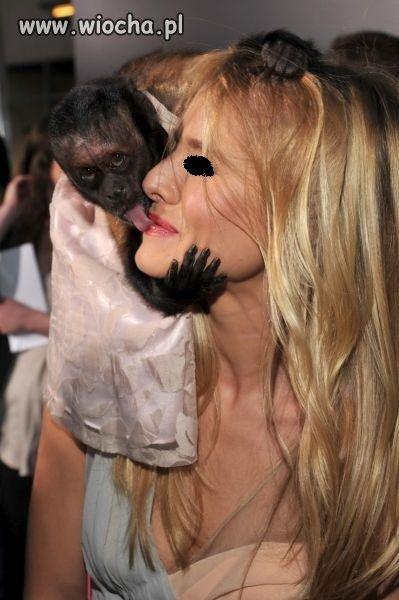 Ciekawe co ta małpka lizała wcześniej ???