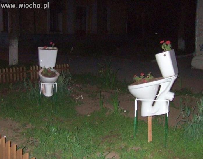 Piękna aranżacja ogrodu