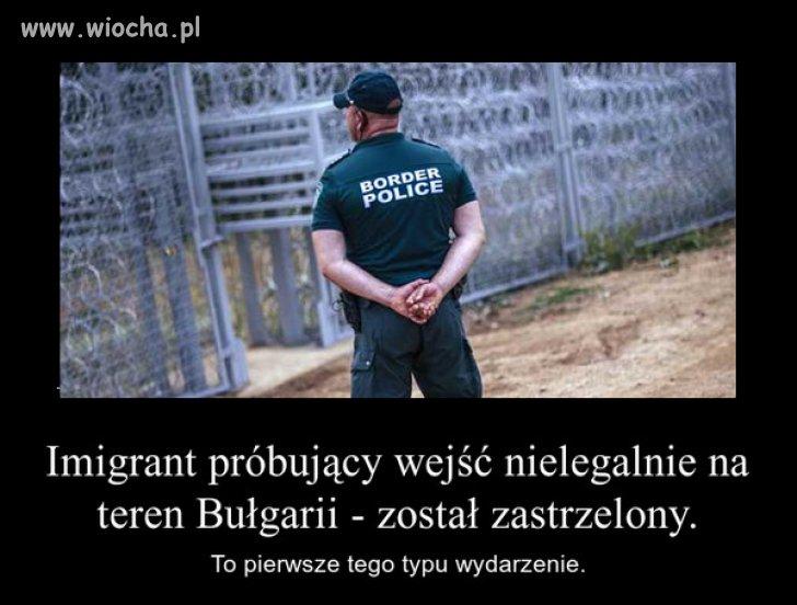 Bułgarzy