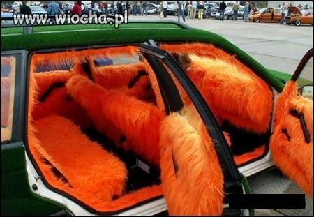 Pomarańczowy futrzak