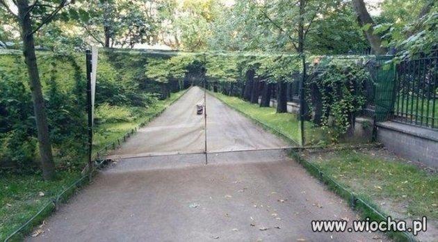 Kiepski pomysł na bramę