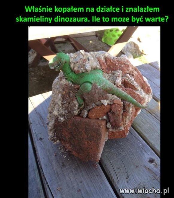 Skamieliny dinozaura