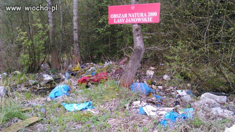 Prawidłowa segregacja śmieci w XXI wieku